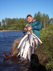 Silvers,silver salmon