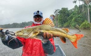Kalua catfish