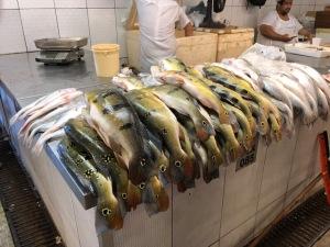 Kalua fish market